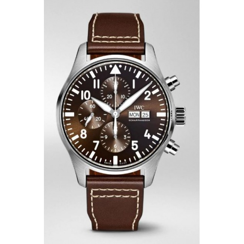 IWC Pilot´s Watch IW377713